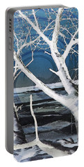 Portable Battery Charger featuring the photograph Frozen In Time by Shawna Rowe