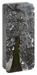 Portable Battery Charger featuring the photograph Frozen Tree 2 by Felicia Tica