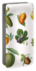 Fruit Portable Battery Charger by English School
