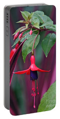 Fuchsia Delight Portable Battery Charger by Byron Varvarigos
