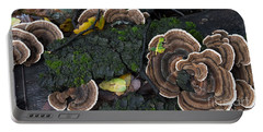 Fungi Contrast Portable Battery Charger