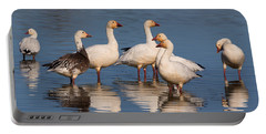 Gaggle Of Snow Geese Reflected Portable Battery Charger