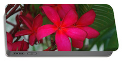 Garden Treasures Portable Battery Charger by Miguel Winterpacht