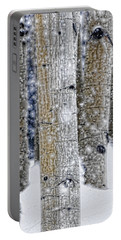 Gently Falling Forest Snow Portable Battery Charger by Don Schwartz