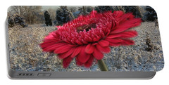 Gerbera Daisy In The Snow Portable Battery Charger