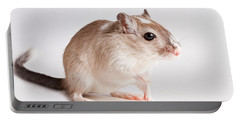 Gerbil Gerbillinae Portable Battery Charger