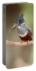 Giant Kingfisher Megaceryle Maxima Portable Battery Charger by Panoramic Images