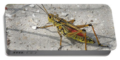Portable Battery Charger featuring the photograph Giant Orange Grasshopper by Ron Davidson
