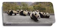 Giant Panda Cubs Wolong China Portable Battery Charger