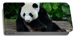 Giant Panda With Tongue Touching Nose At River Safari Zoo Singapore Portable Battery Charger
