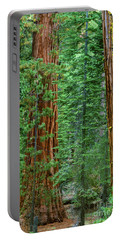 Giant Sequoias Sequoiadendron Gigantium Yosemite Np Ca Portable Battery Charger