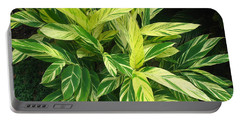 Portable Battery Charger featuring the photograph Ginger Lily. Alpinia Zerumbet by Connie Fox