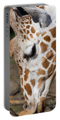 Giraffe 7d8902 Portable Battery Charger