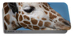 Giraffe 7d8905 Portable Battery Charger