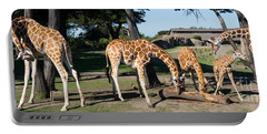 Giraffe Dsc2872 Long Portable Battery Charger