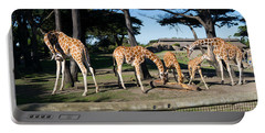Giraffe Dsc2872 Portable Battery Charger