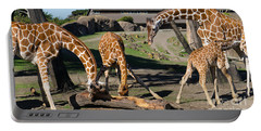 Giraffe Dsc2873 Long Portable Battery Charger