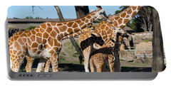 Giraffe Dsc2875 Portable Battery Charger