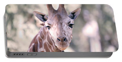 Portable Battery Charger featuring the pyrography Giraffe Staring  by Shoal Hollingsworth
