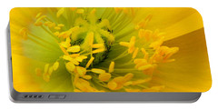 Portable Battery Charger featuring the photograph Glory Of Nature by Deb Halloran