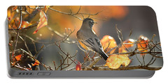 Portable Battery Charger featuring the photograph Glowing Robin 2 by Nava Thompson
