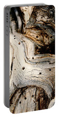 Gnarly Portable Battery Charger by Leanna Lomanski