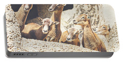 Goats On A Rock Portable Battery Charger