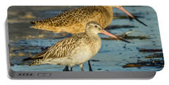Godwits Portable Battery Charger