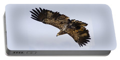 Portable Battery Charger featuring the photograph Golden Eagle by J L Woody Wooden