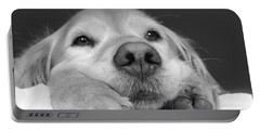 Golden Retriever Dog I See You Portable Battery Charger