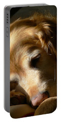 Golden Retriever Dog Sleeping In The Morning Light  Portable Battery Charger