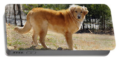 Golden Retriever Portable Battery Charger by Kenny Francis