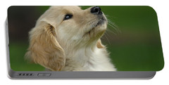 Golden Retriever Puppy Portable Battery Charger