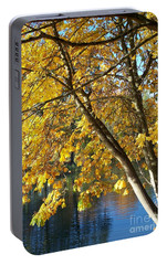 Portable Battery Charger featuring the photograph Golden Zen by Chalet Roome-Rigdon