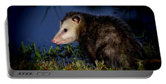 Portable Battery Charger featuring the photograph Good Night Possum by Olga Hamilton