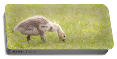 Portable Battery Charger featuring the photograph Gosling by Jeannette Hunt
