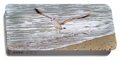 Graceful Landing Portable Battery Charger by Betsy Knapp