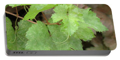 Portable Battery Charger featuring the photograph Grapevine by Laurel Powell