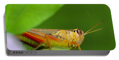 Grasshopper Portable Battery Charger
