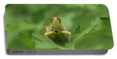Portable Battery Charger featuring the photograph Grasshopper Portrait by Olga Hamilton