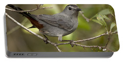 Portable Battery Charger featuring the photograph Gray Catbird by Meg Rousher