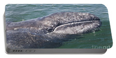 Gray / Grey Whale Eschrichtius Robustus Portable Battery Charger