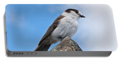 Gray Jay With Blue Sky Background Portable Battery Charger