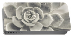 Gray Succulent Portable Battery Charger