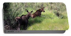 Grazing Along Portable Battery Charger