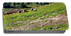 Grazing Big Horn Sheep Portable Battery Charger