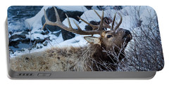 Portable Battery Charger featuring the photograph Grazing Elk by Michael Chatt