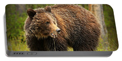 Grazing Grizzly Portable Battery Charger