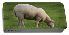 Grazing Sheep Portable Battery Charger