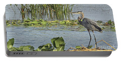 Portable Battery Charger featuring the photograph Great Blue Heron by Carol  Bradley